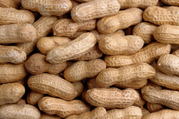Eating Peanuts During Pregnancy May Reduce Risk of Allergy in Children, Study Shows