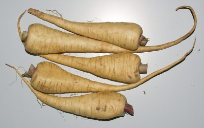 Why We Should Enjoy Parsnips