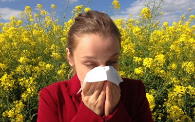 Can Mums-To-Be Eat to Avoid Allergies?