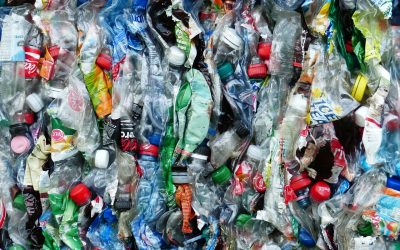 Plastic and Food Packaging