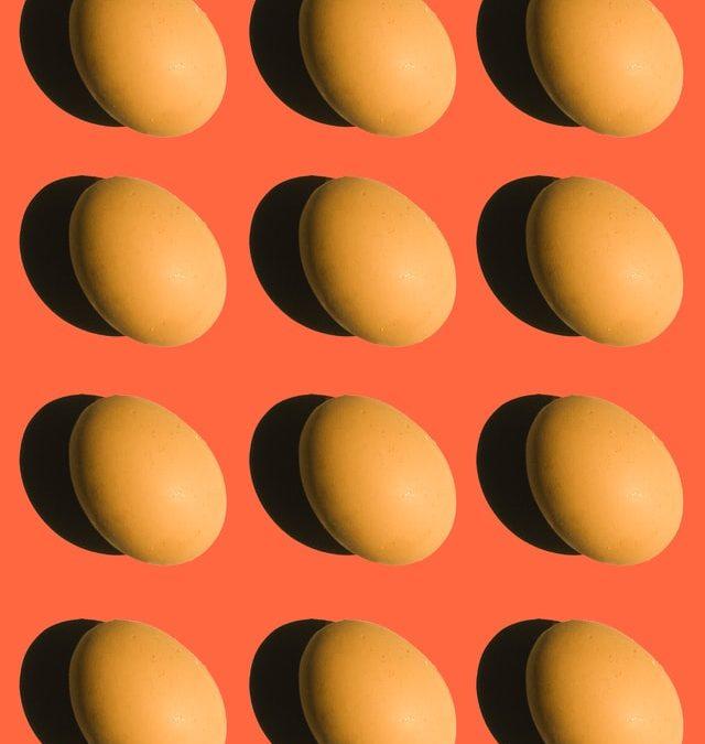New Webinar – Nutrition Myths Busted!
